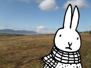 DSCF4892-small+rabbit