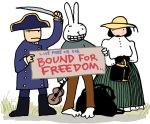 Rabbit-Freedom-RGB-w=600-www_MarekBennett_com